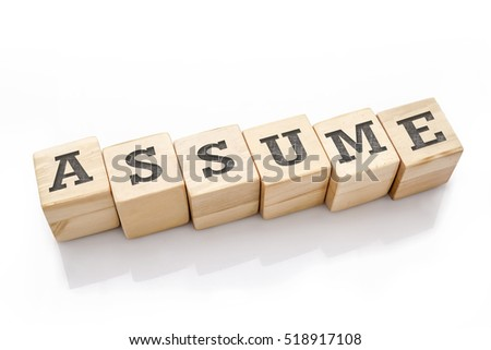 ASSUME word made with building blocks isolated on white
