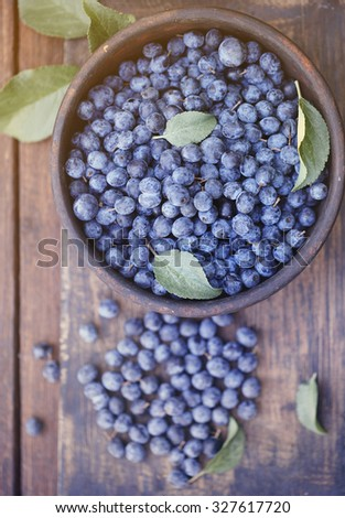 Astringent healing fruit Prunus spinosa in a bowl
