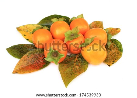 Astringent persimmon of Japan - stock photo