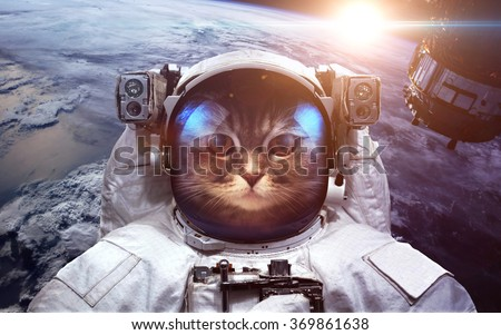 Astronaut cat in outer space against the backdrop of the planet earth. Elements of this image furnished by NASA - stock photo