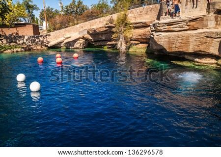 Swimming Hole Stock Images Royalty Free Images Vectors Shutterstock