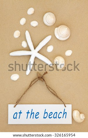 At the beach sign with starfish, mother of pearl and cockle shells on sand background. - stock photo