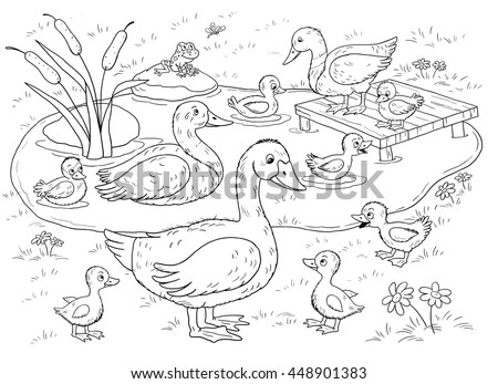 farm domestic animals cute duck ducklings stock illustration 448901383 shutterstock. Black Bedroom Furniture Sets. Home Design Ideas