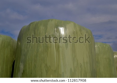 At the farms in Zelhem, The Netherlands, hay bales are wrapped in plastic. - stock photo