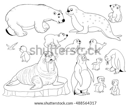 At The Zoo A Small Set Of Cute Arctic Animals White Bear Seal