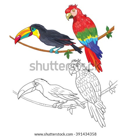 At the zoo. African animals. Cute African birds. Toucan and parrot. illustration for children. Coloring book. Coloring pages. Cartoon characters isolated on white background. - stock photo