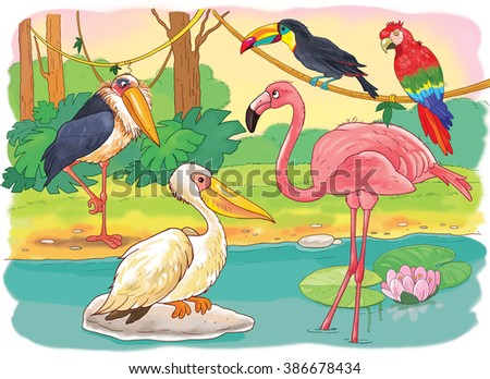 At the zoo. African animals. Small set of African birds. Cute flamingo, pelican, marabou, toucan and parrot. Illustration for children. Cartoon characters. Coloring book. Coloring page. - stock photo