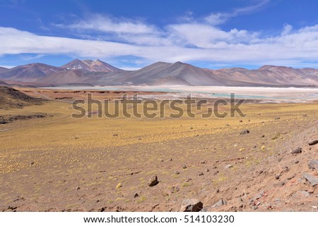 Atacama colorful landscape