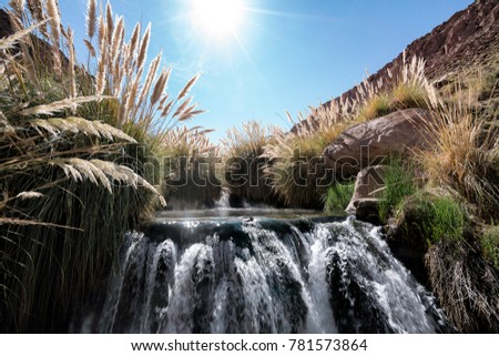 Atacama desert, Chile: 07/11/2016: Thermal Pools, Waterfall and Pampas Grass