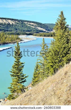 Athabasca river behind green trees on sunny spring day - stock photo