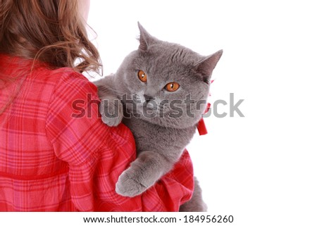 Attractive beautiful young girl holding adorable British cat  - stock photo