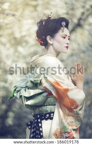 attractive geisha walking outdors against blossoming tree - stock photo