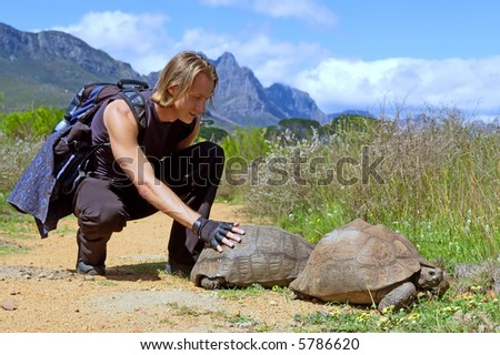 Attractive muscular backpacker touches tortoise on road - and misty majestic mountains as a background. Shot in Jan Marais nature reserve, Stellenbosch, Western Cape, South Africa.