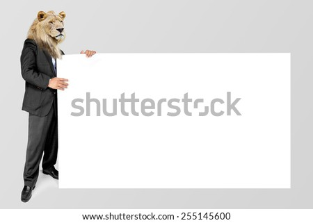 Attractive Old Business Lion man holding a blank white board. Male hands and finger holding a blank white panel. isolated on a gray background - stock photo