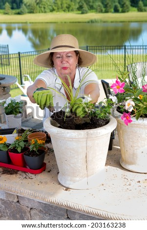 Attractive senior lady in a straw sunhat potting up houseplants in large planters to display on her outdoor patio filling the pot with rich organic soil and compost - stock photo