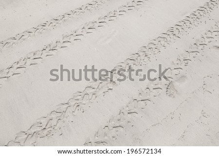ATV tracks on the white sand beach - stock photo