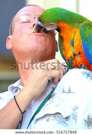 AUGUST 31, 2013. SEATTLE, WA.  CIRCA: Male trainer and parrot kissing in the mouth for tourist outside.
