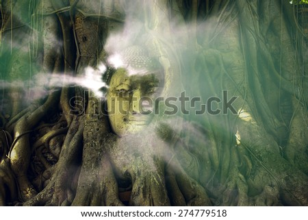 Aura lighting coming out from Buddha in the tree roots - stock photo