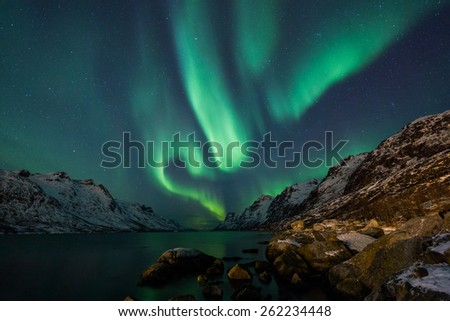 Aurora Borealis (Northern Lights) above coastal sea - stock photo