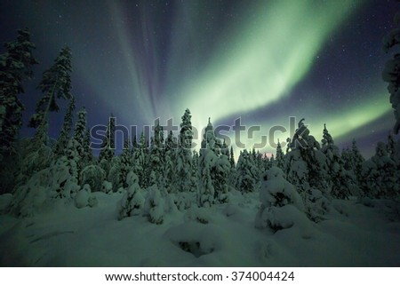 Aurora borealis (Northern Lights) in Finland, lapland - stock photo