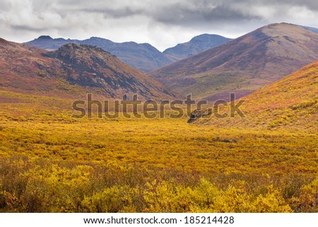 Aurumn fall colors in mountain tundra of Tombstone Territorial Park near Dempster Highway north of Dawson City, Yukon Territory, Canada - stock photo