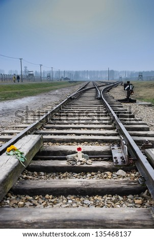 Auschwitz Railway Lines in the Winter Fog with a Poppy and Yellow Rose laid down