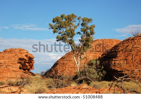 Australia centre countryside with red rocks - stock photo
