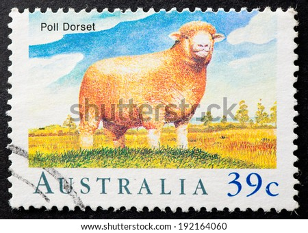 AUSTRALIA - CIRCA 1989:A Cancelled postage stamp from Australia illustrating Sheep in Australia, issued in 1989. - stock photo