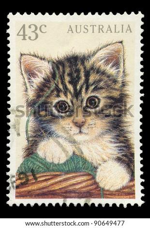 AUSTRALIA - CIRCA 1991: A 43 cent stamp printed in Australia shows image of a kitten, circa 1991 - stock photo