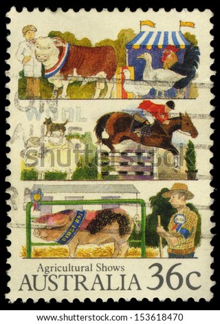 AUSTRALIA - CIRCA 1987: A stamp printed in Australia shows the Livestock, Agricultural Shows series, circa 1987 - stock photo