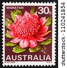 AUSTRALIA - CIRCA 1968: a stamp printed in the Australia shows Waratah, New South Wales, State Flower, circa 1968 - stock photo