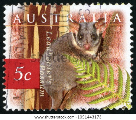 Possum Stock Images, Royalty-Free Images & Vectors ...