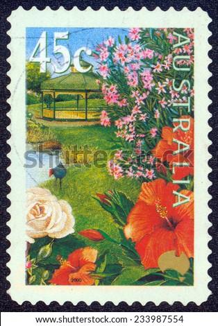 AUSTRALIA - CIRCA 2000: stamp printed by Australia, shows flowers in the garden, circa 2000 - stock photo