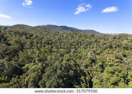 Australia Kuranda Forest Park - stock photo