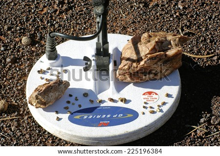 AUSTRALIA - MAY 17: hard metal detector on a background of mineralized soil . Collection of gold nuggets and pieces of quartz containing gold has just been found, may 17, 2007 - stock photo