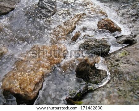 Austrian Alps, High Tauern National Park, frozen snow and rain on plants - stock photo