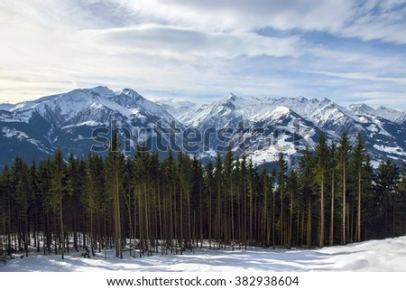 Austrian Alps peaks with spruce on the foreground - stock photo