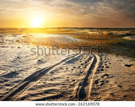 Auto traces in a sand desert at sunset - stock photo