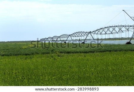 Automated Agricultural Irrigation sprinkler system in operation on processed agricultural field on a bright sunny summer day
