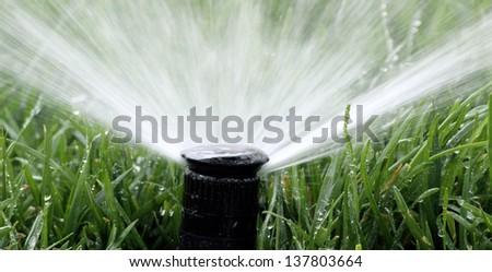 Automatic Garden Irrigation Spray watering lawn - stock photo