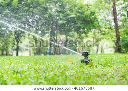 Automatic garden sprinkler action watering grass.