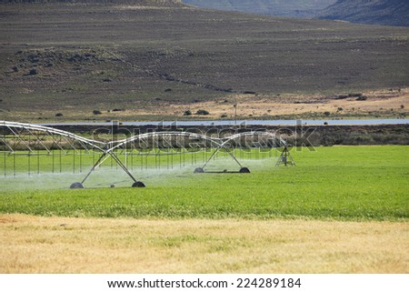 Automatic irrigation system on an agricultural farm in the Northern Cape of South Africa - stock photo