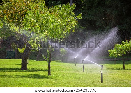Automatic sprinkler watering in the garden at summer day - stock photo