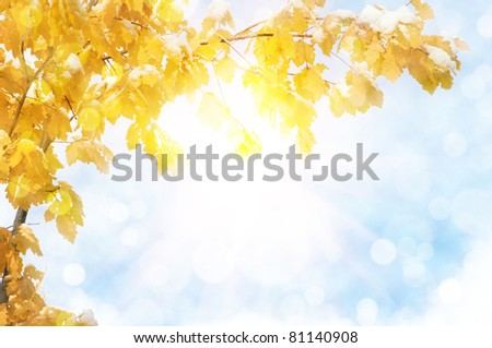 autumn abstract background with sun beam - stock photo
