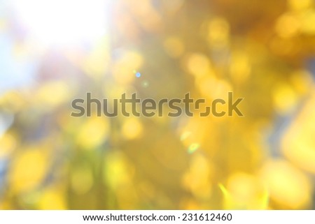 Autumn abstract blurred background with leaves - stock photo