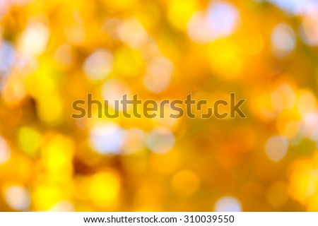 Autumn abstract, fall season colors  background with a magic lights, out of focus - stock photo
