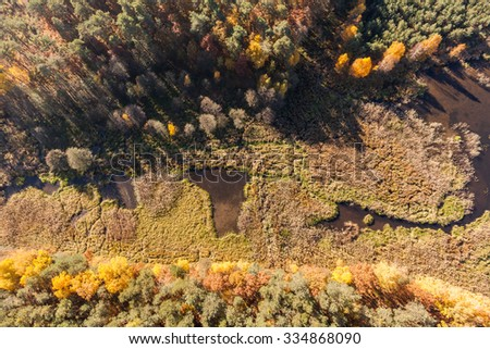 autumn, Aerial view of autumn forest   - stock photo