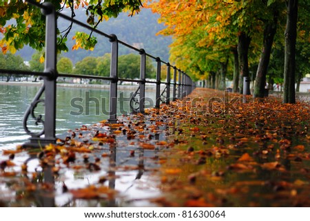 Autumn alley by lake covered with chestnuts in the morning - stock photo