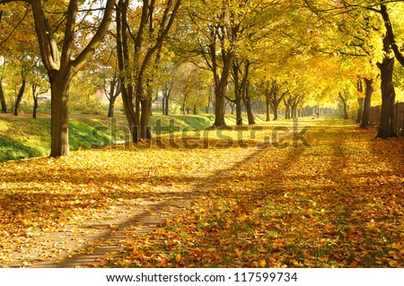 autumn alley in a park - stock photo