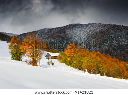 Autumn and early-fallen snow. Ukraine, the Carpathian mountains. October. - stock photo